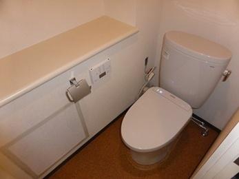 節水能力の高いシンプルなデザイントイレに